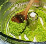 Garlic Scape Cilantro Pesto - She Cooks, He Cleans